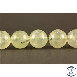 Perles semi précieuses en préhnite - Rondes/10 mm