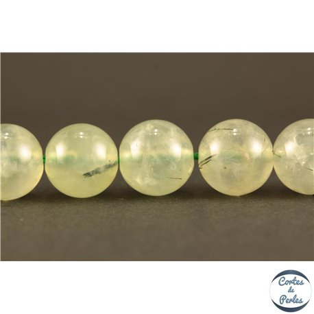 Perles semi précieuses en Préhnite - Ronde/10 mm