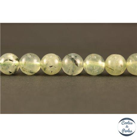 Perles semi précieuses en Préhnite - Ronde/8 mm
