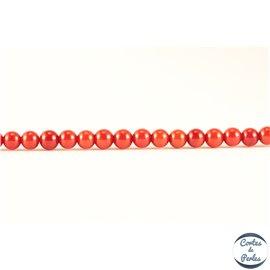 Perles semi précieuses en Corail - Ronde/4 mm - Dark Red
