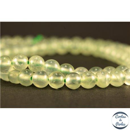 Perles semi précieuses en Préhnite - Ronde/5 mm - Grade AA